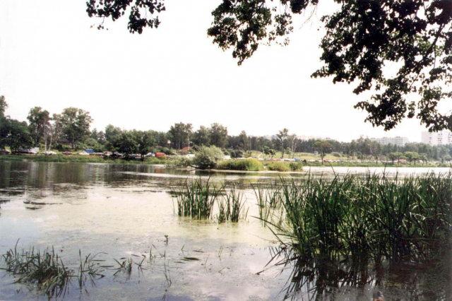 рыбалка дмитровское шоссе пруды